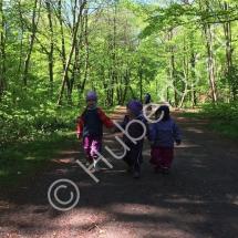Plauderstunde im Wald_HandinHand-imp